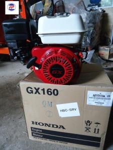 Động cơ nổ Honda GX 160T2